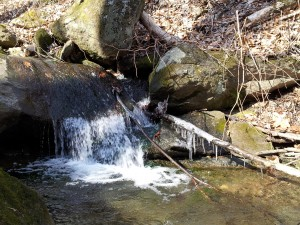 stream at loch raven